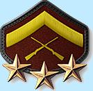 8 - Lance Corporal 3 Stars (LC4)